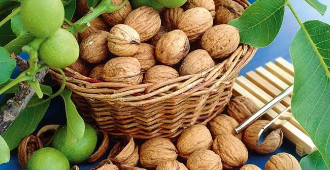 walnutide kaalulangus veesisalduse rasva kadu