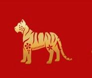 kaalulangus tiigrimutteriga slimming kujundav aluspesu