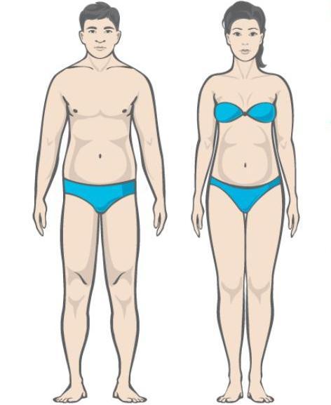 beta 2 agonistlik rasva poletamine