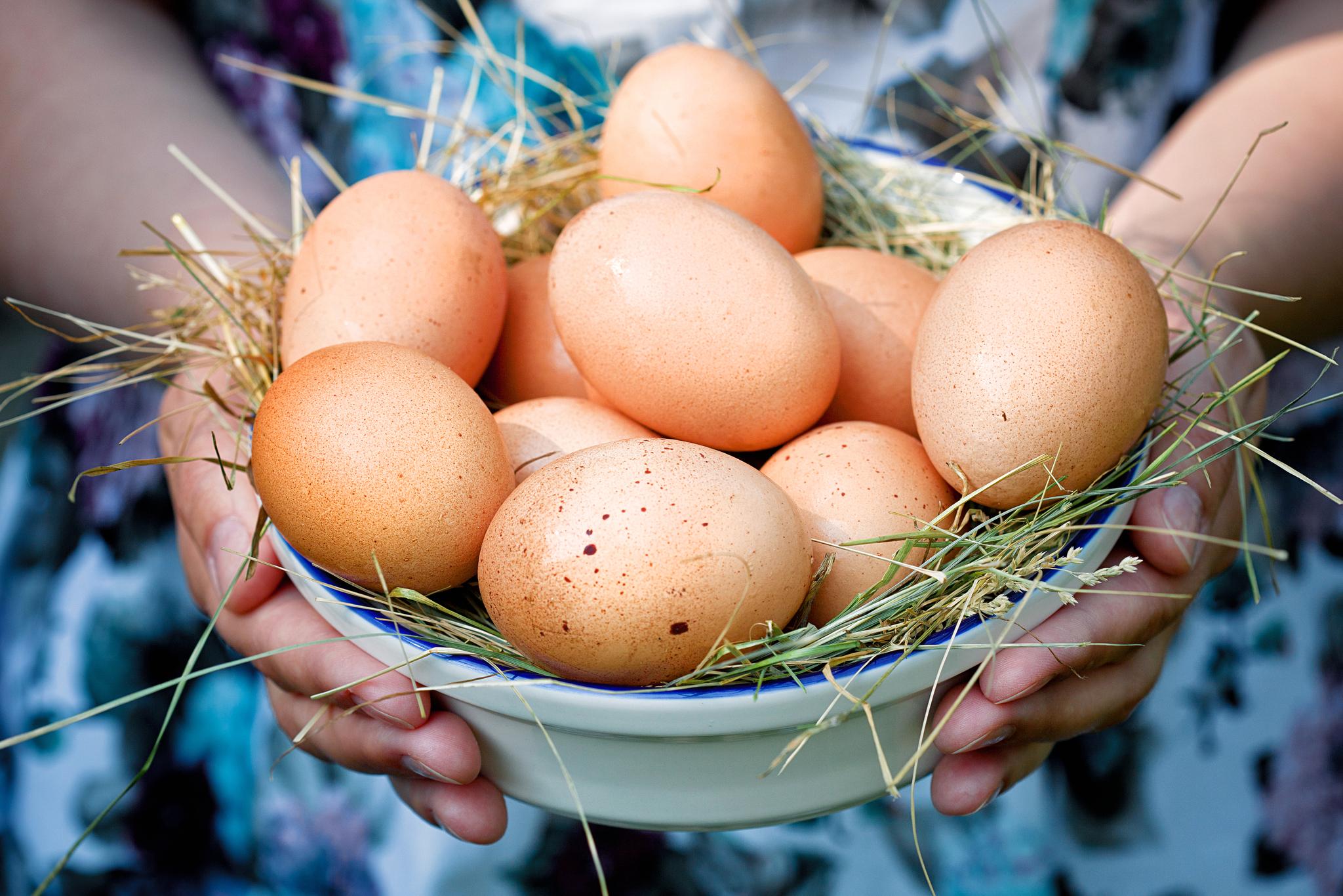 soomine palju mune kaalulangus